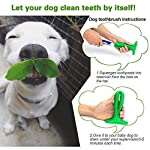 Dog Toothbrush Stick Chew Toys with Finger Dog Toothbrush and Small Cleaning Brush – Dental Care Brushing Stick Brite Bite Brushing Stick Nontoxic Natural Rubber Bite Resistant Chew Toys for Dogs