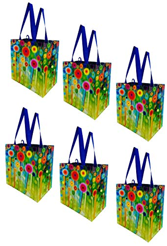 Earthwise Reusable Grocery Bags Shopping Totes Stylish Gift Bag Heavy Duty Laminated Material (Pack of 6) (Abstract…