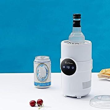 Wokee 0,5 L Kühlkaraffe Rapid Ice Flaschenkühler 5 ° 55 ° C