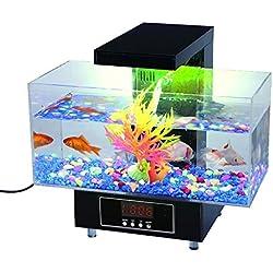 Premier acuario de escritorio (Completo del regalo para Oficina y Hogar) por Express Panda®