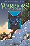 Twilight (Warriors: The New Prophecy)