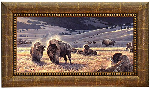 THE HIDDEN VALLEY Nancy Glazier Framed CANVAS Signed & Numbered w/coa Buffalo Bison Limited Edition