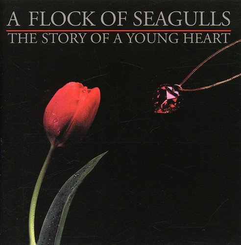 (Story Of A Young Heart /  A Flock Of)