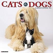 Cats & Dogs 2019 Wall Calendar