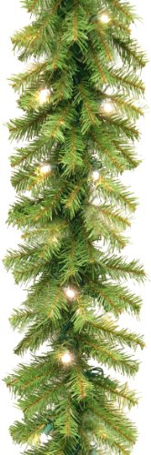 National Tree 9 Foot by 10 Inch Norwood Fir Garland with 50 Battery Operated Dual LED Lights - Fir Norwood Garland