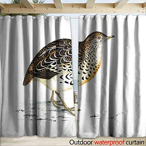 warmfamily Blackout Curtain Andalusian Quail - Hand Coloured Engraving Drapery W108 x ()