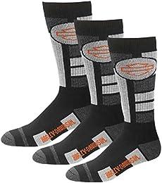 Men's Ultra Cushion Wool Riding Socks 3 Pairs - Black