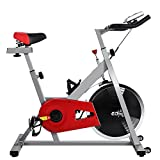 YUEBO Pro Indoor Cycling Bike, Magnetic Cycling Trainer Exercise Bicycle (40 lb Flywheel, S-1000) (Silver and Red) YUEBO