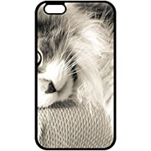 T.H.A iPhone X Hard Plastic Case cat furry lying Theme [Scratch Resistant] Uncommon Phone Accessories