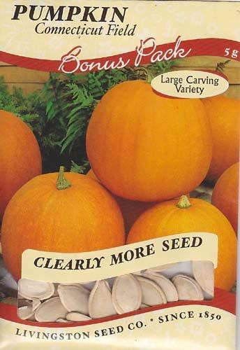 Field Pumpkin - Connecticut Field Pumpkin Seeds - 5 grams