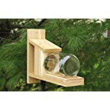 Songbird Essentials Gold Crest Squirrel Jar Feeder