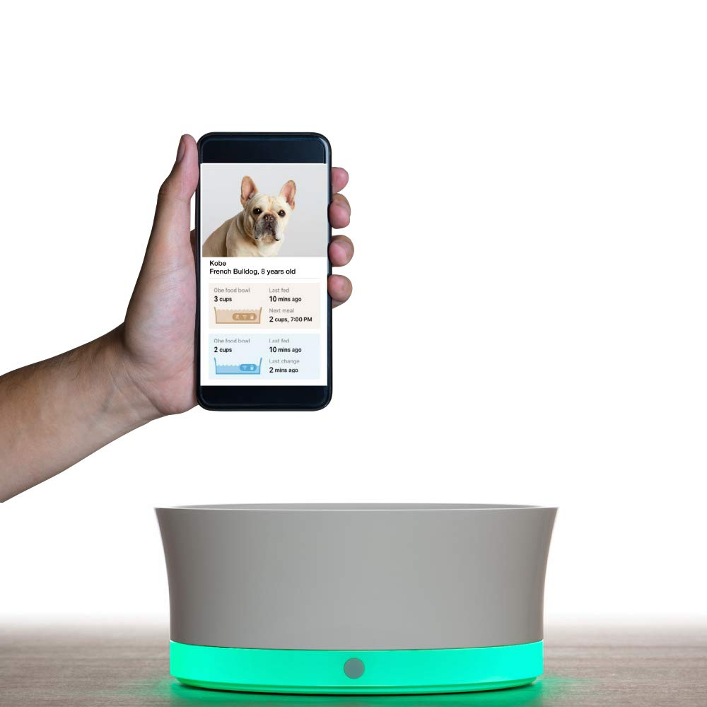 Obe Probowl Smart Dog Bowl for Small Dogs Under 30 Lbs, Wi-Fi Enabled App for iPhone, Award Winning Dog Bowl, White