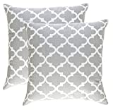 Decorative Pillow Cover - TreeWool, Cotton Canvas Trellis Accent Decorative Throw Pillow Covers (2 Cushion Covers; 20 x 20 Inches; Silver Grey & White)