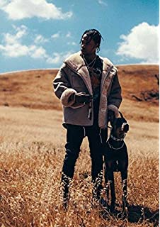 Travis Scott Astroworld Photo Print Poster Welcome To Rodeo Birds