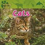 Cats, Christina Wilsdon, 1433920220