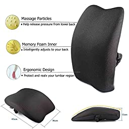 Meiz Memory Foam 3D Breathable Mesh Lumbar Support Back Cushion Pillow to Properly Align the Spine and Ease Lower Back Pain with Insert and Strap for Home,Office Chair and Car - Black