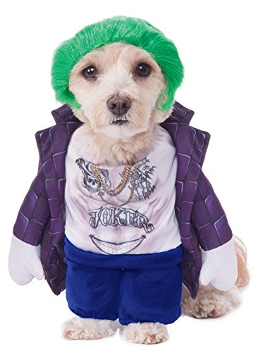 Rubie's Costume 580668LXL-XL Co Dc Comics Suicide Squad Walking The Joker Pet Costume, -