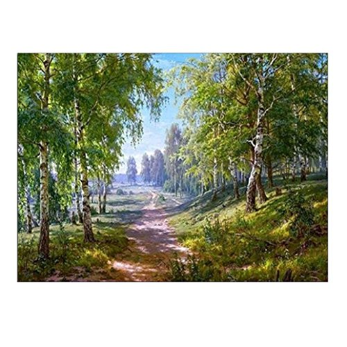 Franterd Landscape - 5D DIY Diamond Paintings - Rhinestone Embroidery Pasted Painting - Arts, Crafts & Sewing Cross Stitch Kit - Home Decor Craft (30X25CM, C)
