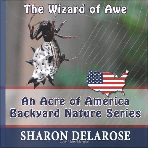 The Wizard of Awe photoblog book
