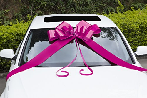 Zoe Deco Big Car Bow (30