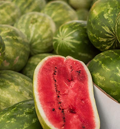 - Sweet Yards Seed Co. Organic Watermelon Seeds 'Jubilee' - Approx. 10 Open Pollinated Heirloom Non-GMO Seeds (Sweet Watermelon Seeds)