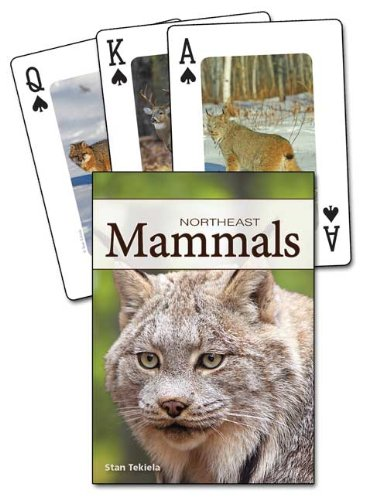 Mammals of the Northeast Playing Cards (Nature's Wild (Northeast Hobby)