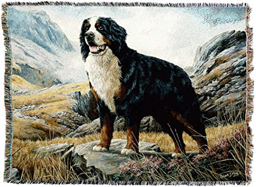 Pure Country 1935-T Bernese Mountain Dog Pet Blanket, Various Blended Colorways, 53 by 70-Inch by Pure Country