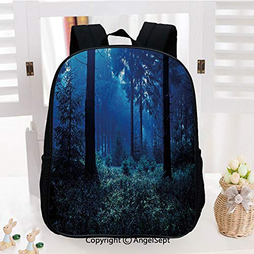 Lightweight Backpack Misty Nature Scene of Autumn Forest in Thuringia Germany Tranquil Woodland Decorative School Bag for Kid Girls Boys Travel College School Bags,Blue Green White