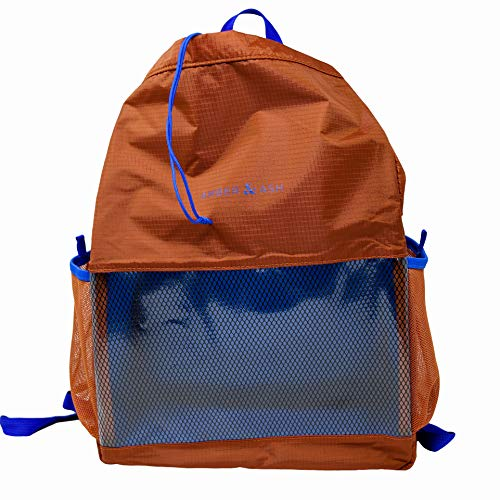 Amber & Ash Drawstring Backpack - Foldable, Water-Resistant Daypack with Durable, Transparent Panel - Packable & Lightweight Bag for School, Travel, Sports, and The Gym - Fits 13 in Laptop [Sienna]