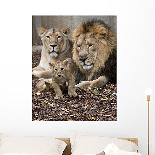 Wallmonkeys Family Lion Wall Mural Peel and Stick Graphic (36 in H x 29 in W) WM355101