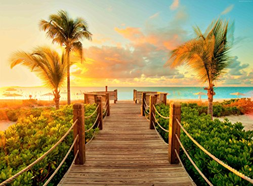 Adult Jigsaw Puzzle Beach Sunset Sea Nature Turks and Caicos Grace Bay 500-Pieces ()