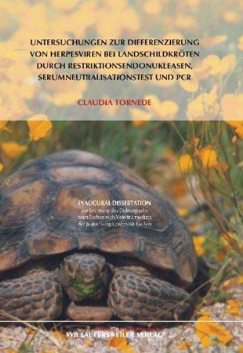 Untersuchungen zur Differenzierung von Herpesviren bei Landschildkröten durch Restriktionsendonukleasen, Serumneutralisationstest und PCR
