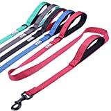 Vivaglory Dog Training Leash with 2 Padded Handles, Heavy Duty 6ft Long Reflective Safety Leash Walking Lead for Medium to Large Dogs, Red