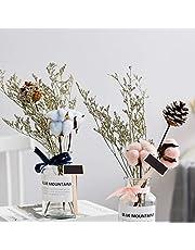 Raybre Art® 20x Nuevo Traje de Etiquetas de Madera de Plantas de Hierbas para Etiquetas de Flores de Pizarra Pizarra