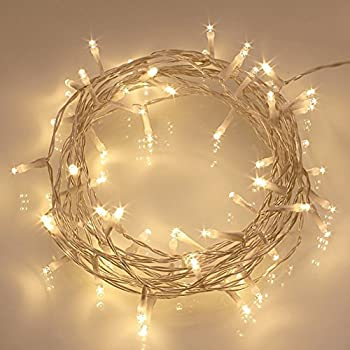 Remote and Timer] 40 LED Outdoor Fairy Lights - 8 Modes Battery ...