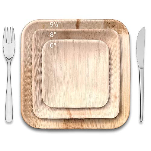 Functional Art Square Plate - Thynk Palm Leaf Plates - 6 Inch Square - All Natural 100% Biodegradable and Compostable - Disposable Dinnerware - Perfect Party Plates - 20 Count