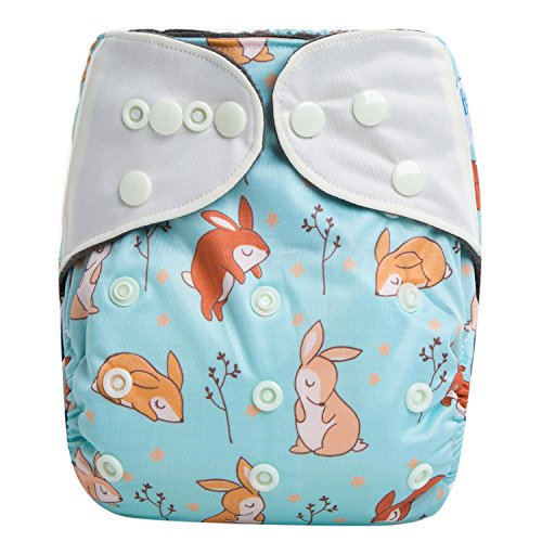 HappyEndings Contoured Day or Night AI2 All In Two All In Two Cloth Diaper/Snap-in Insert Vintage Bunnies