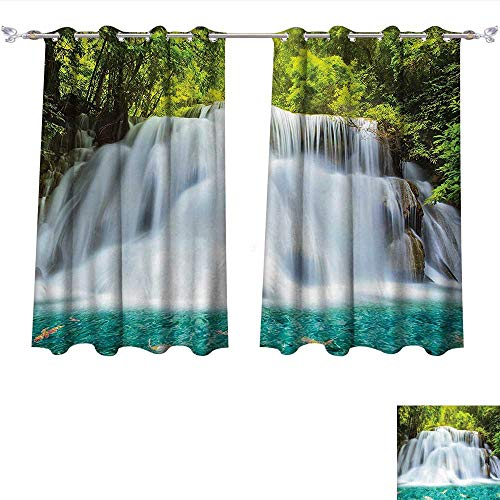 Qinqin-Home Thermal Insulating Blackout Curtain Natural Waterfall Clouds of Fog Rolling Over Waterfall Trees Clear Pond Fish Tropic Patterned Drape for Glass Door (W63 x L63 -Inch 2 Panels) (Waterfall Glass Clear Grande)