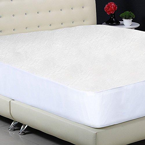 Protect-A-Bed Premium Waterproof Mattress Protector, Queen ...