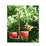 Cheap Songbird Essentials SEHHDBAP Double Fruit Feeder (Set of 1)