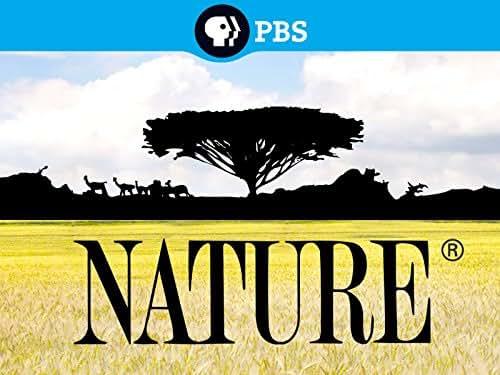 Nature: Season 1