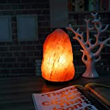 "Natural 8-11 lbs Himalayan Salt Lamp, Iextreme Crystal Glow Salt Rock Lamp with Wood Base , UL Certified Cord, Brightness Dimmable Control ( 7-10"" Height )"