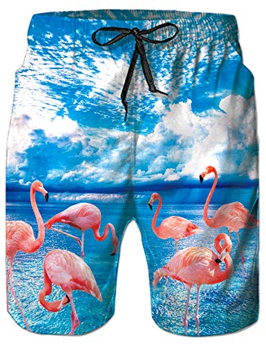 Loveternal Guy Pink Flamingo Swimming Trunks Funny Cute Running Sport Shorts Quick Dry Blue Sky Tropical Swim Trunks with Breathable Mesh Liner Bermuda Hawaiian Shorts L]()