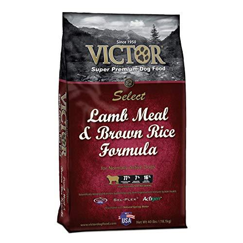 Victor Lamb Meal And Brown Rice Formula Dry Dog Food, 40 Lb. Bag (Dry Formula Brown Rice)