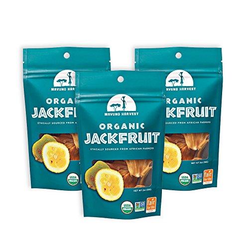 freeze dried jackfruit - 1