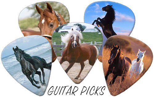 Horses Full Colour Premium Guitar Picks x 5 Medium 0.71 Printed Guitar Picks