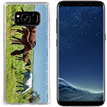 Luxlady Samsung Galaxy S8 Clear case Soft TPU Rubber Silicone IMAGE ID 30717326 Horses in the mountains equine nag hoss hack dobbin a solid hoofed plant eating domesticate