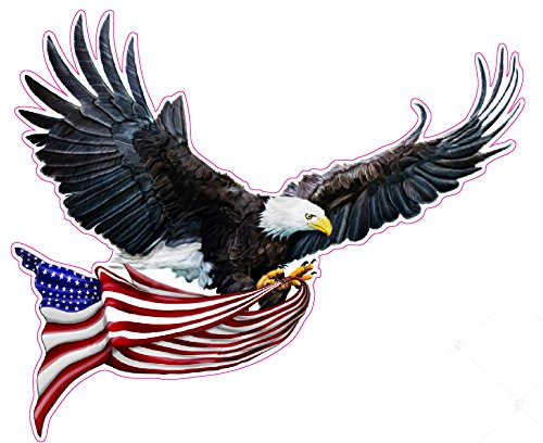 Nostalgia Decals Super Store Right Facing Soaring Eagle Flying with American Flag Large 12 inch Decal Fast from The United States