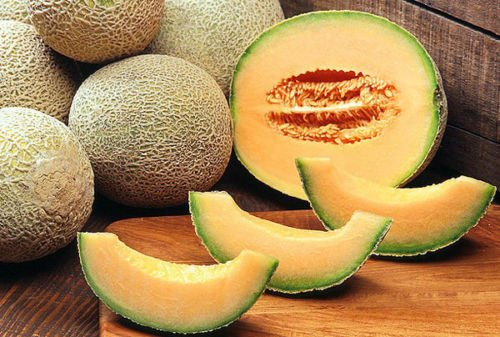 25+ ORGANIC Melon Sweet Summer Mix Seeds Honeydew Heirloom NON-GMO