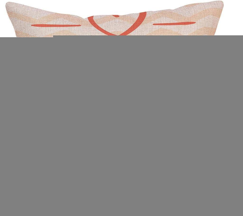 Cojines pillow Fundas Protectores Cojines y accesorios